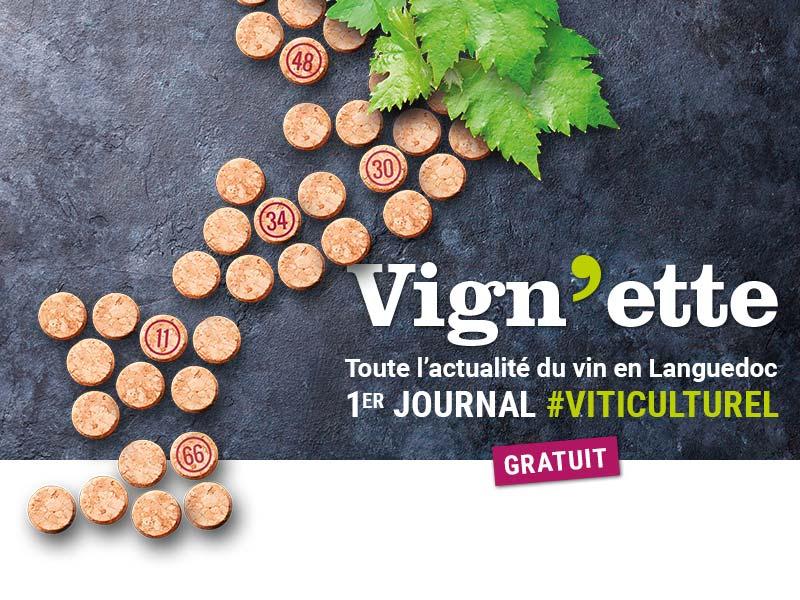 journal-vignette-a-propos-actualite-du-vin-languedoc