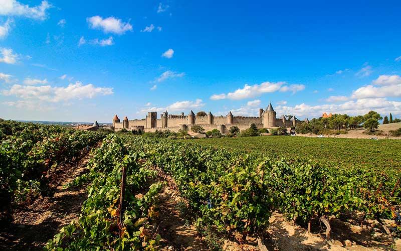 Vin IGP de Territoire : Carcassonne