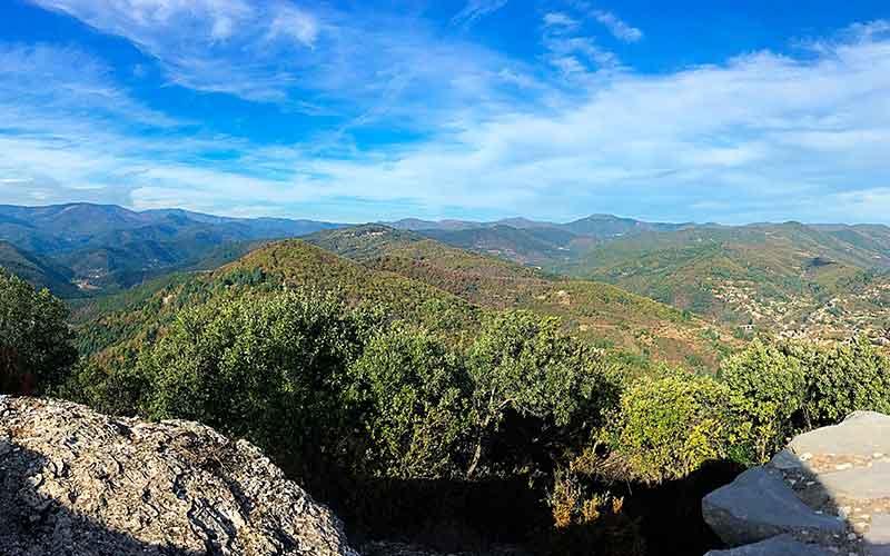 IGP Cévennes, vin du Languedoc